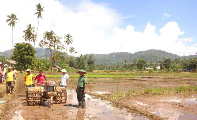 TNI Dorong Petani Tanam Padi Lebih Awal