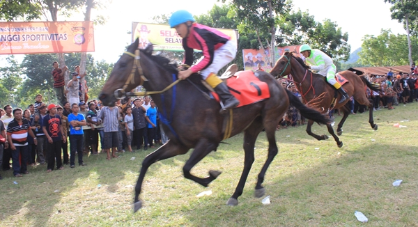Kuda Milik Bupati BoltimJuarai Pacuan Kuda Se-Sulawesi