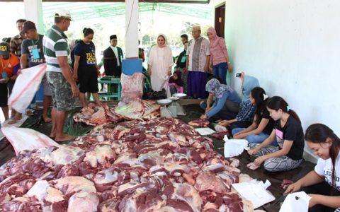Wali Kota Tatong Bara saat memantau pembagian daging kurban