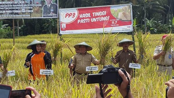 Wali Kota Kotamobagu Panen Padi Bersama TNI