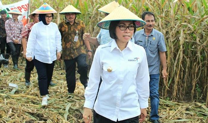 Bolmong Siap Kembangkan Program Produk Unggulan Kawasan Perdesaan