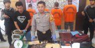 Polres Bolmong Kejar Pembeli Ganja di Bolmong Raya