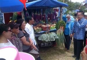 Nampak Hasil sumber daya alam Holtikultura asal Desa Modayag
