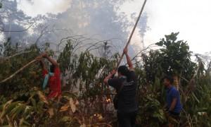 Kebakaran Purworedjo