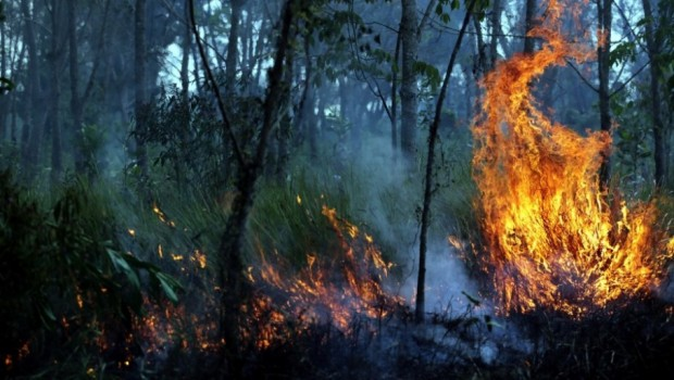 10 Titik Api di Barito Utara Kembali Terdeteksi