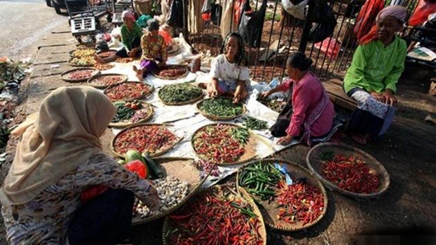 Doa Pedagang Cabai: Pemerintah Tolong Stabilkan Harga