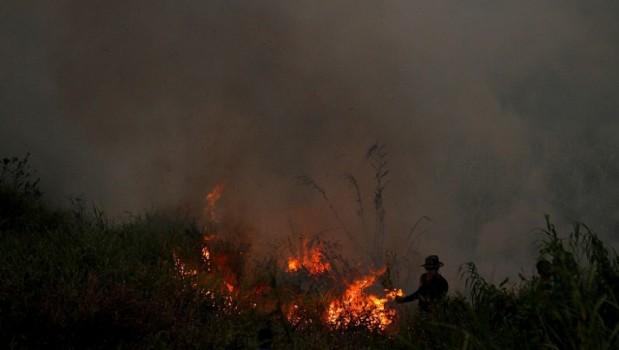 """Masyarakat Diminta Laporkan Oknum Aparat yang Jadi """"Backing"""" Pembakar Lahan"""