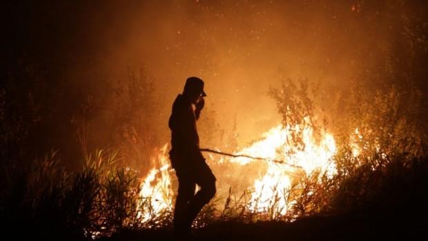 17 Perusahaan di Riau Diduga Terlibat Pembakaran Lahan