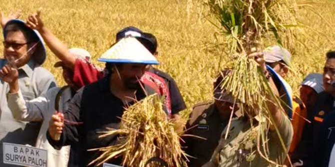 Surya Paloh ingin Indonesia menjaga ketahanan pangan agar tak impor