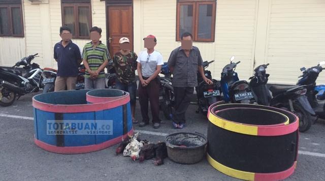 Satreskrim Polres Bolmong Amankan Lima Orang di Lokasi Judi Sabung Ayam di Desa Bungko