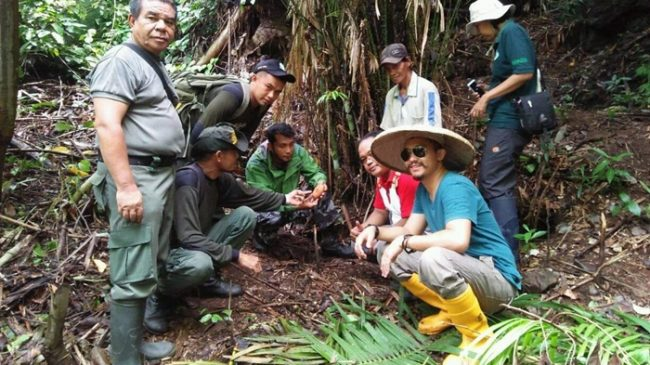 TNBNWB Bersama Warga Bolsel Amankan Telur Burung Maleo dari Serangan Predator