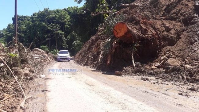 Beginilah Kondisi Jalur Trans Sulawesi Pasca Longsor