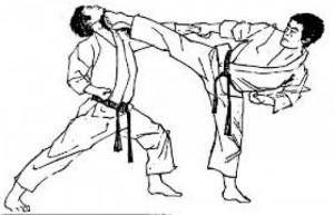 Atlet Karate