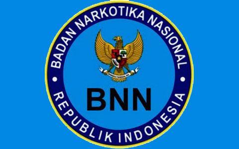 ilustrasi bnn