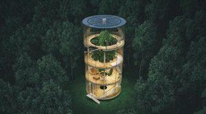 rumah kaca gantung ditengah hutan